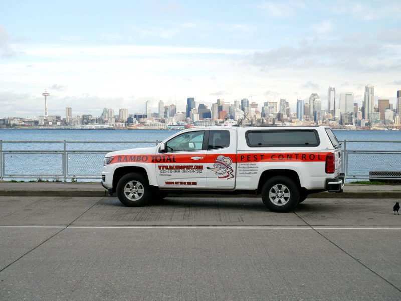 Seattle WA Rambo Total Pest Control