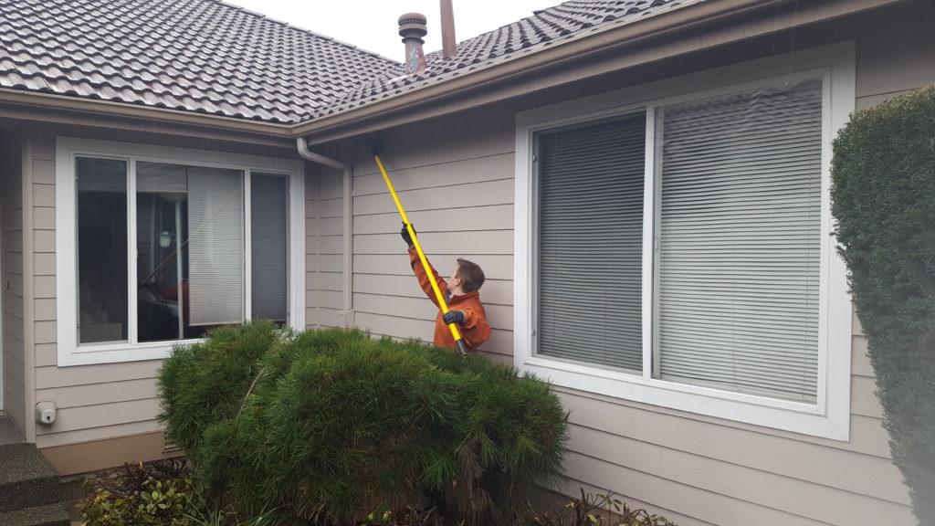 Rambo Total Pest Control Auburn, WA