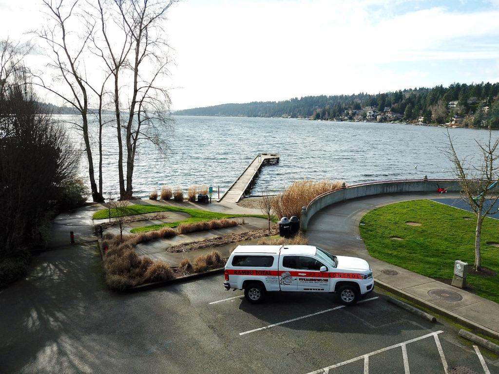 Rambo Total Pest Control Bellevue Dock WA