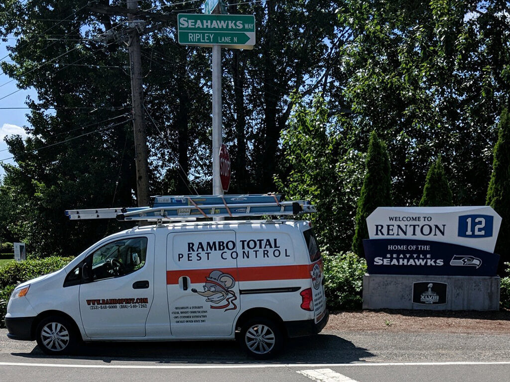 Renton Pest Control & Pest Removal Experts | Rambo Total