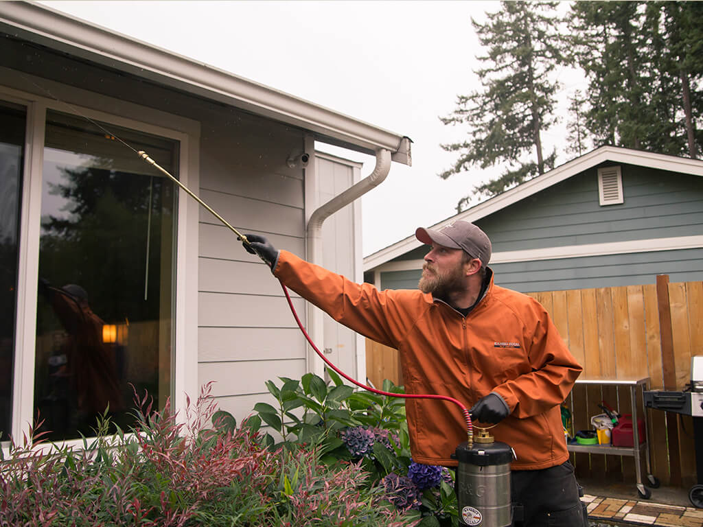 Rambo Total Pest Control spraying for pests