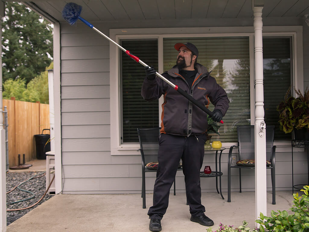 outdoor pest removal